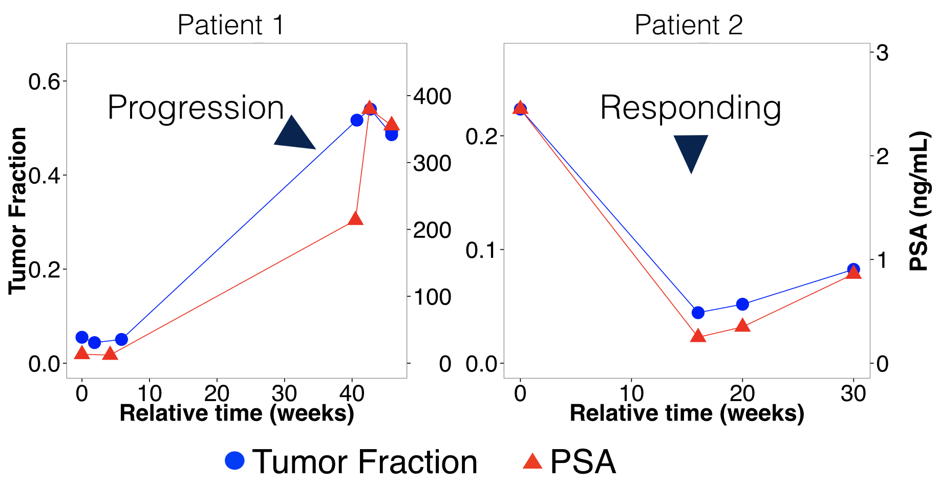 Circulating tumor DNA fraction tracks with prostate specific antigen.