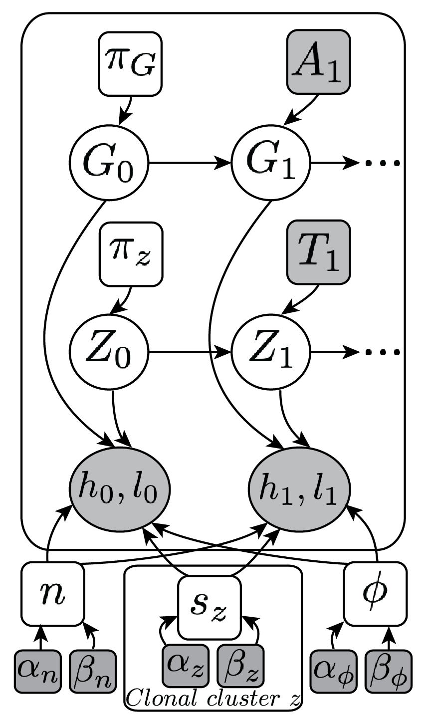 Probabilistic graphical model of TITAN